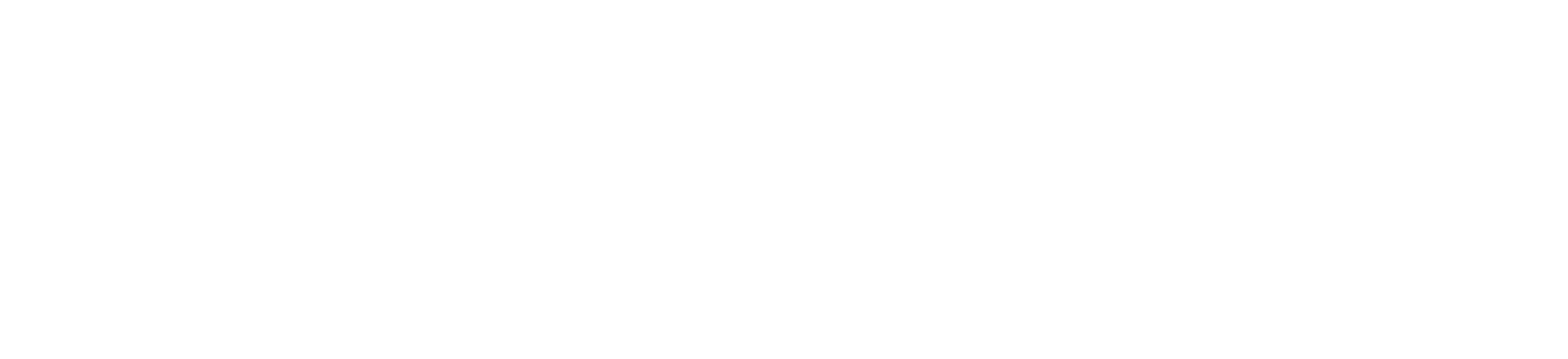 Logo dark